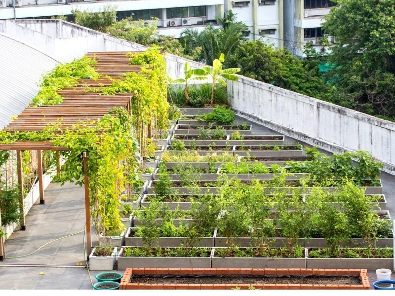 urban-gardening-dach