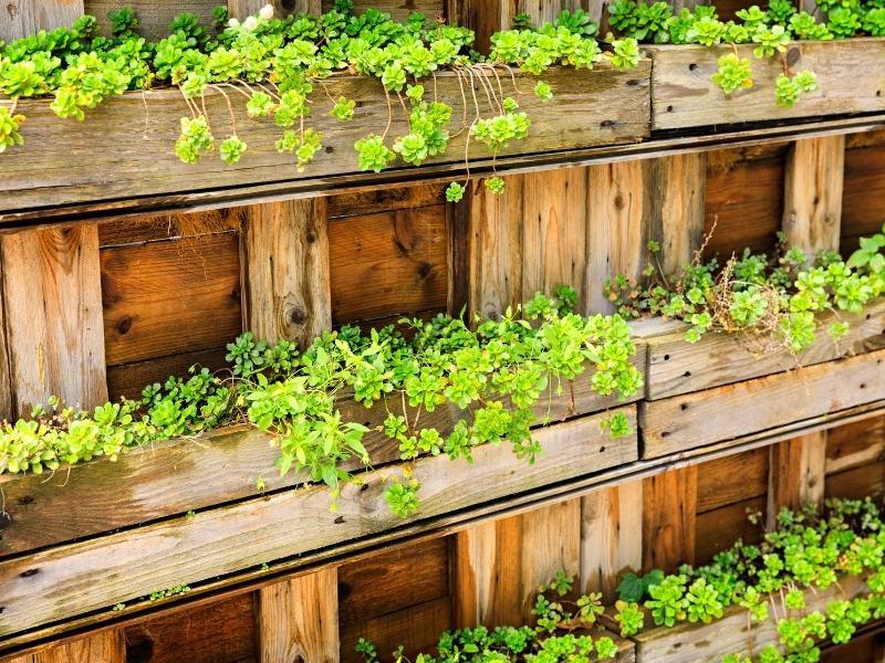 urban-gardening-stadt2